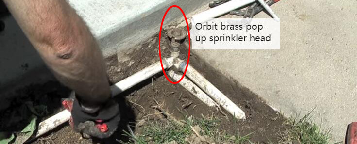 orbit brass pop-up sprinkler head.jpg